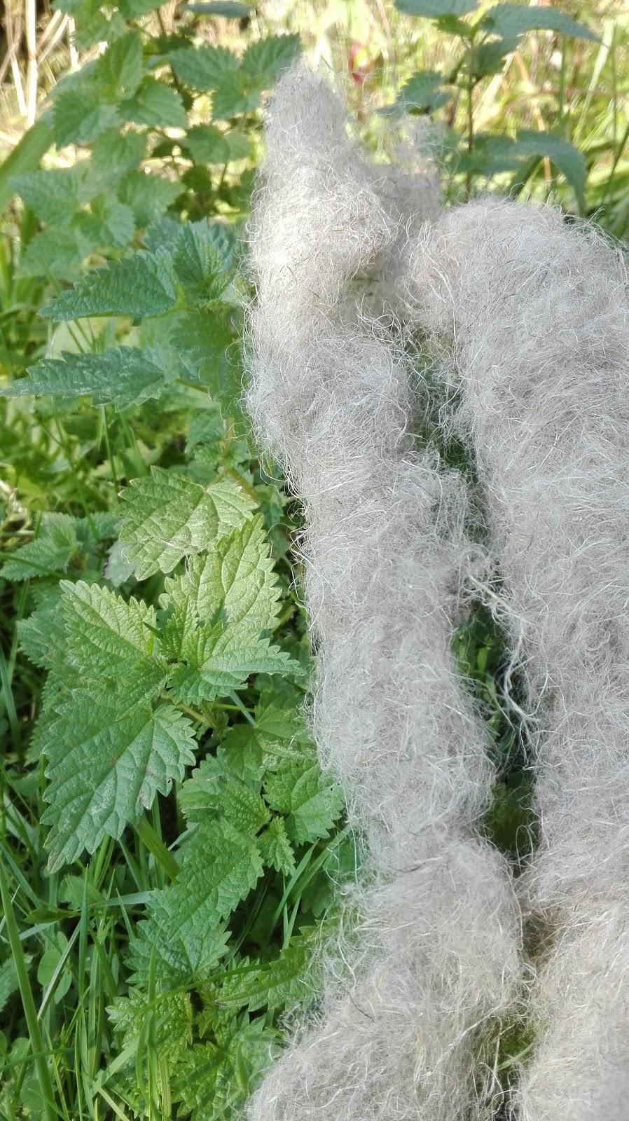 Włókno z pokrzywy- eksperyment włókienniczy Pracowni Rzemiosł Dawnych