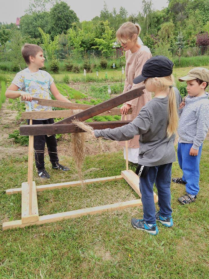 Łodygi, łodyżki i włókna roślinne- zajęcia dla uczniów  Szkoły Podstawowej  Montessori z Elbląga